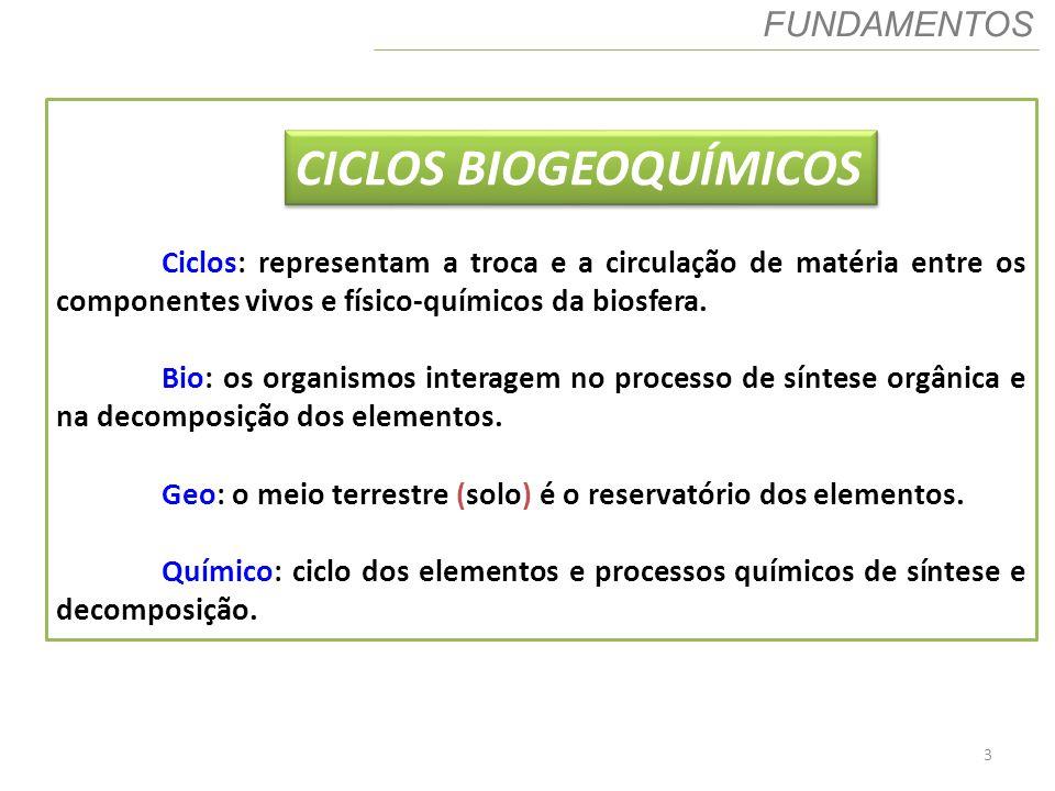3 FUNDAMENTOS Ciclos: representam a troca e a circulação de matéria entre os componentes vivos e físico-químicos da biosfera. Bio: os organismos inter