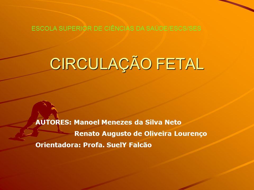 CIRCULAÇÃO FETAL AUTORES: Manoel Menezes da Silva Neto Renato Augusto de Oliveira Lourenço Orientadora: Profa. SuelY Falcão ESCOLA SUPERIOR DE CIÊNCIA