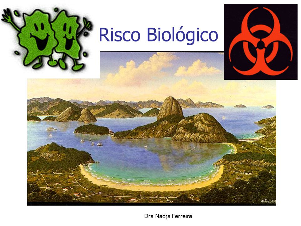Dra Nadja Ferreira Risco Biológico Profissionais de Saúde SÍFILIS - Baixo Risco HEPATITE B / C – Alto Risco AIDS – Baixo Risco ( Subnotificação ) CMV – Crescente Risco