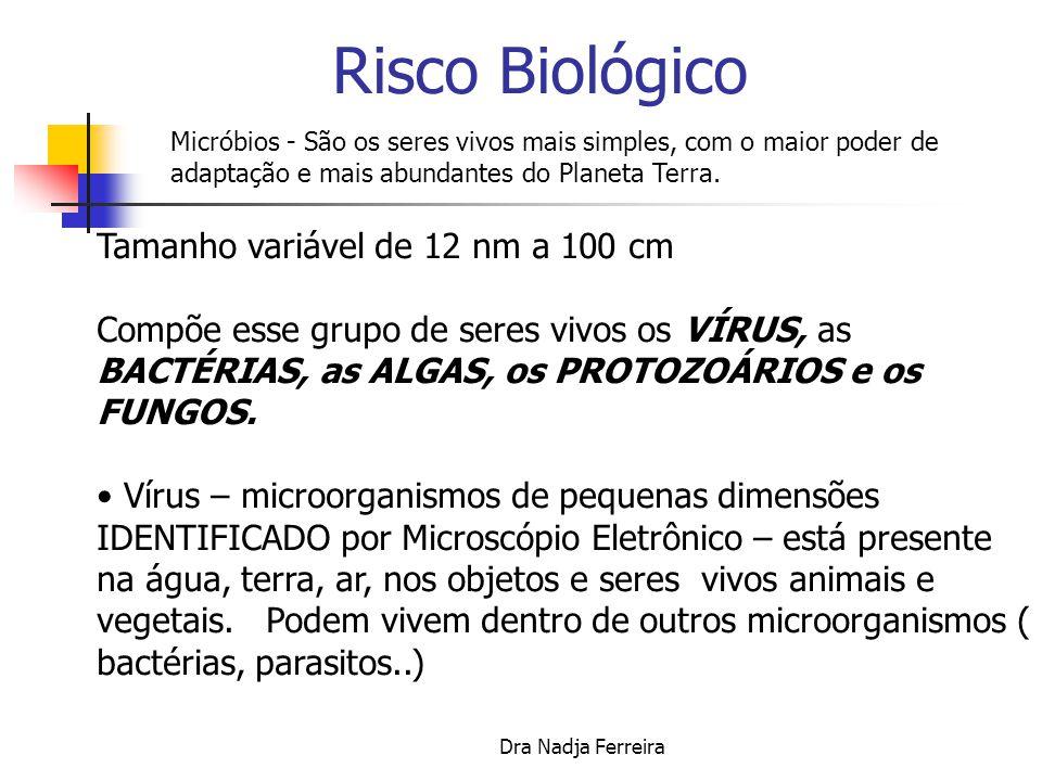 Dra Nadja Ferreira Risco Biológico