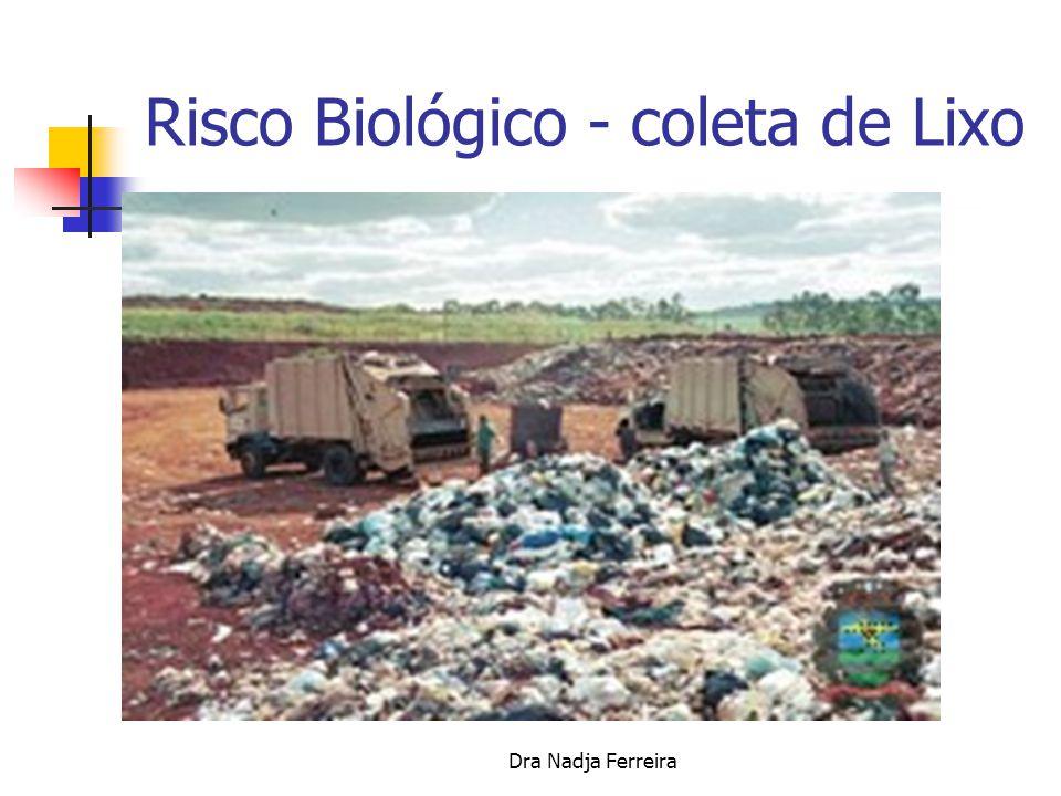 Dra Nadja Ferreira Necrópsia, Exumação e arqueologia