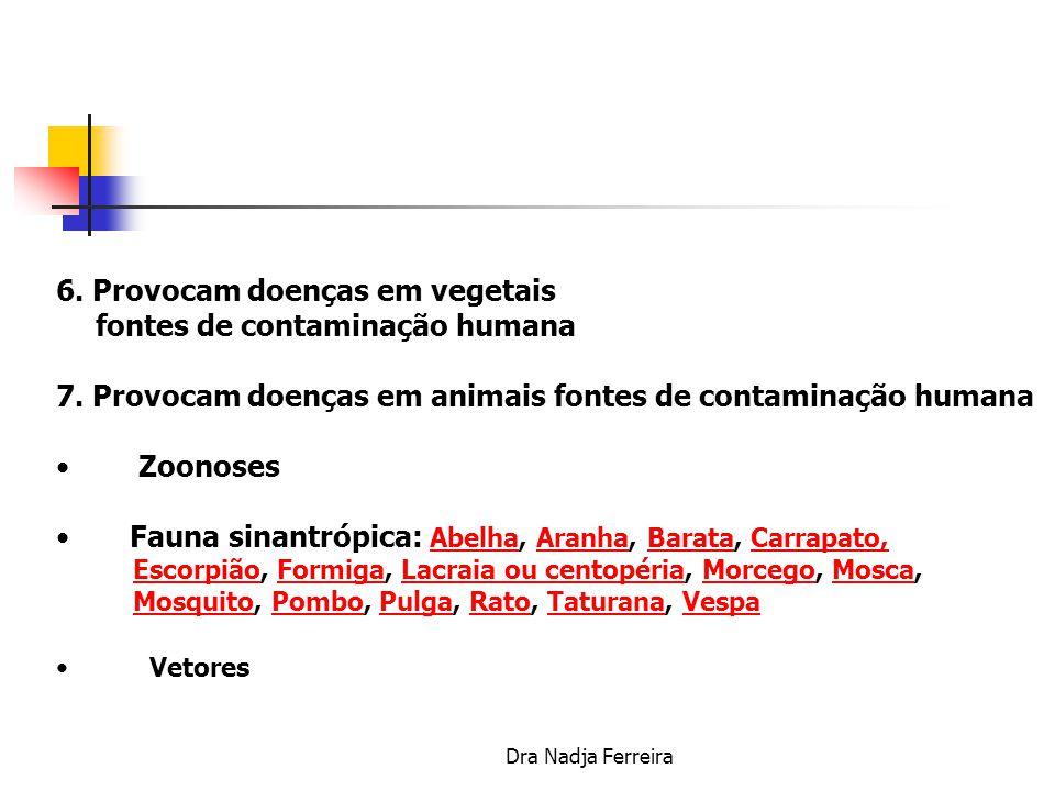5. Atuam nas zoonoses Dirofilariose – mamíferos pp/ cavalos, atinge olhos,tecido celular subcutâneo, pulmoês......Dirofilariose Histoplasmose – fungo