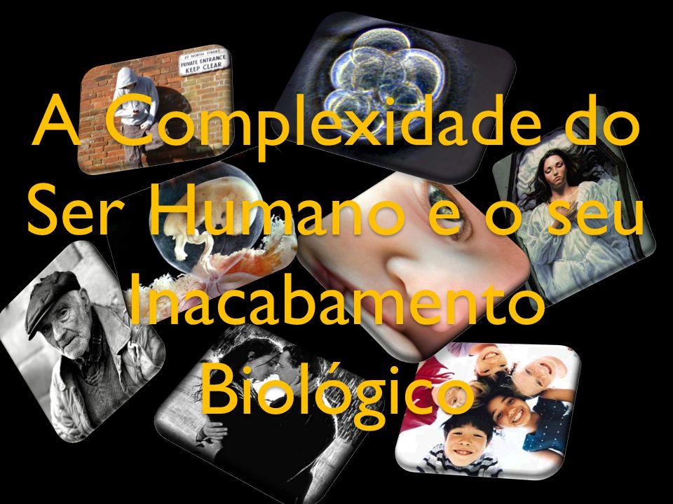 A Complexidade do Ser Humano e o seu Inacabamento Biológico