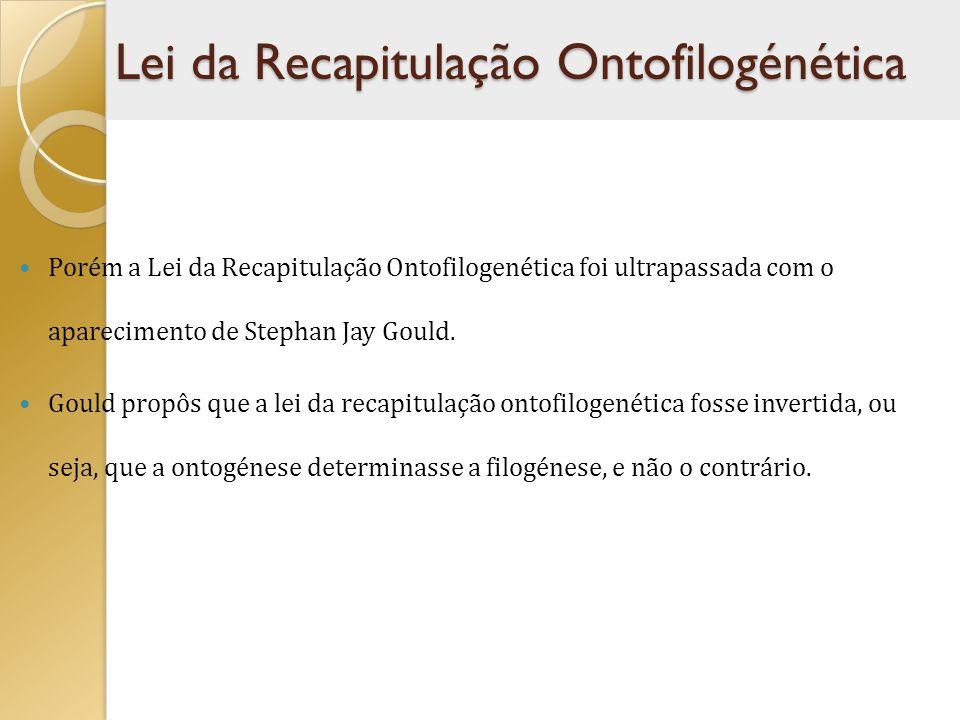 Porém a Lei da Recapitulação Ontofilogenética foi ultrapassada com o aparecimento de Stephan Jay Gould. Gould propôs que a lei da recapitulação ontofi