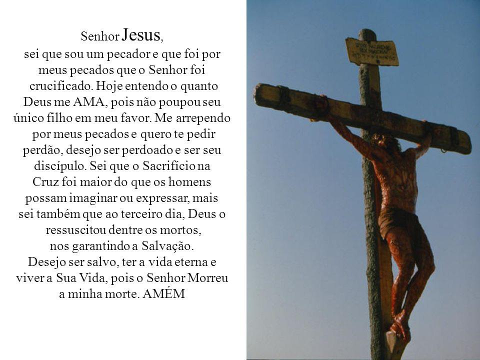 Senhor Jesus, sei que sou um pecador e que foi por meus pecados que o Senhor foi crucificado.