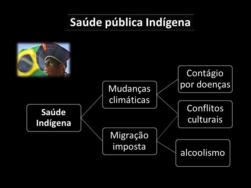 Saúde pública Indígena Saúde Indígena Mudanças climáticas Contágio por doenças Conflitos culturais Migração imposta alcoolismo