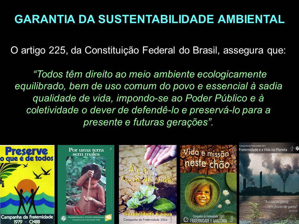 O artigo 225, da Constituição Federal do Brasil, assegura que: Todos têm direito ao meio ambiente ecologicamente equilibrado, bem de uso comum do povo