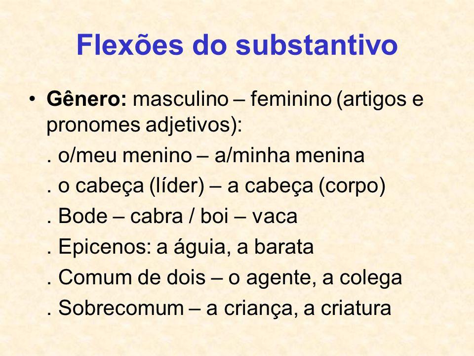 Flexões do substantivo Gênero: masculino – feminino (artigos e pronomes adjetivos):. o/meu menino – a/minha menina. o cabeça (líder) – a cabeça (corpo