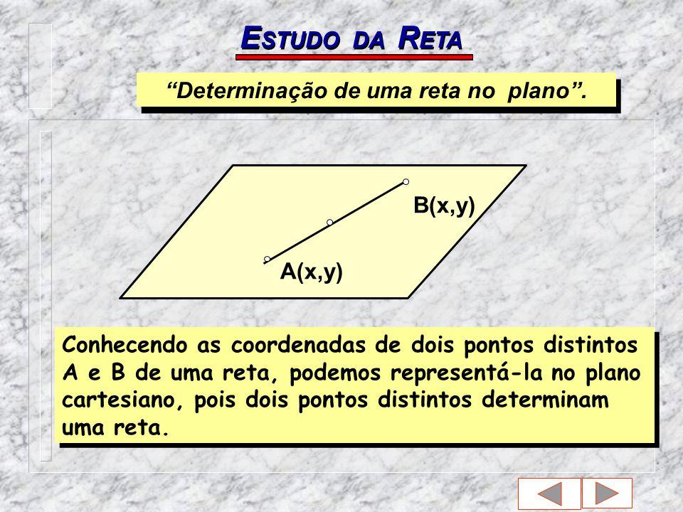 E STUDO DA R ETA Determinação de uma reta no plano.