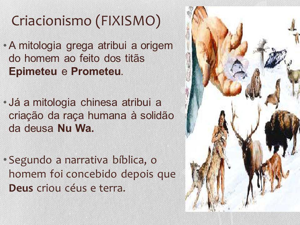 Criacionismo (FIXISMO) A mitologia grega atribui a origem do homem ao feito dos titãs Epimeteu e Prometeu. Já a mitologia chinesa atribui a criação da