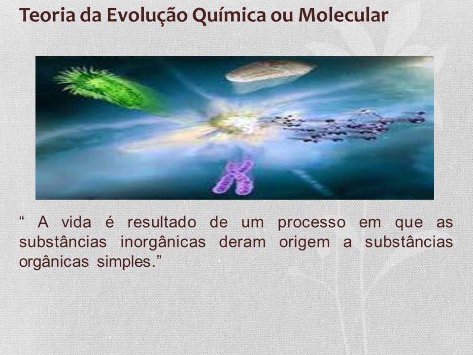 Teoria da Evolução Química ou Molecular A vida é resultado de um processo em que as substâncias inorgânicas deram origem a substâncias orgânicas simpl