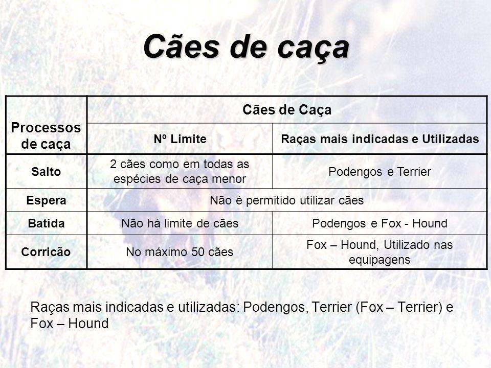 Cães de caça Processos de caça Cães de Caça Nº LimiteRaças mais indicadas e Utilizadas Salto 2 cães como em todas as espécies de caça menor Podengos e