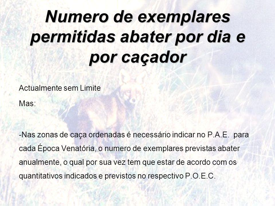 Numero de exemplares permitidas abater por dia e por caçador Actualmente sem Limite Mas: -Nas zonas de caça ordenadas é necessário indicar no P.A.E. p