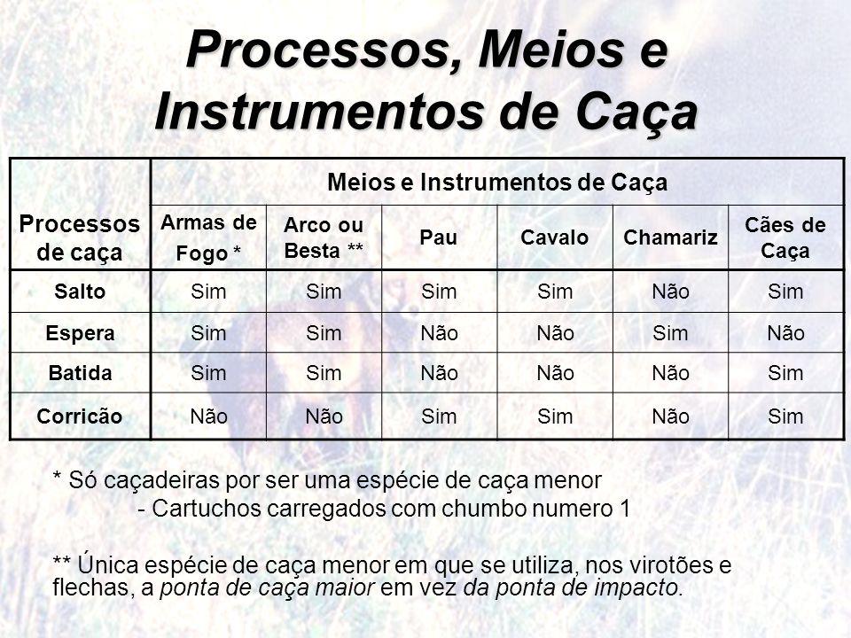 Processos, Meios e Instrumentos de Caça Processos de caça Meios e Instrumentos de Caça Armas de Fogo * Arco ou Besta ** PauCavaloChamariz Cães de Caça