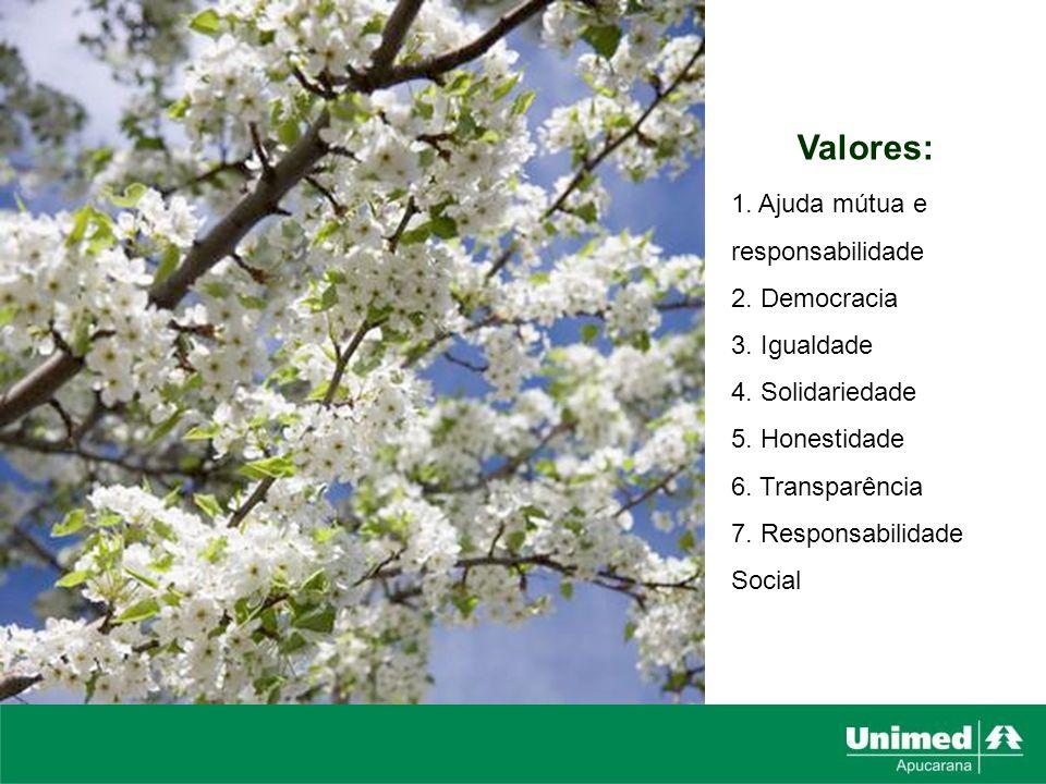 Valores: 1. Ajuda mútua e responsabilidade 2. Democracia 3. Igualdade 4. Solidariedade 5. Honestidade 6. Transparência 7. Responsabilidade Social
