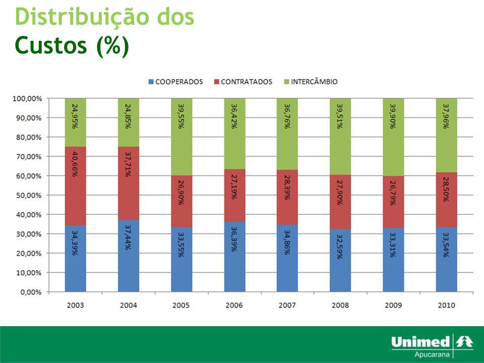 Distribuição dos Custos (%)