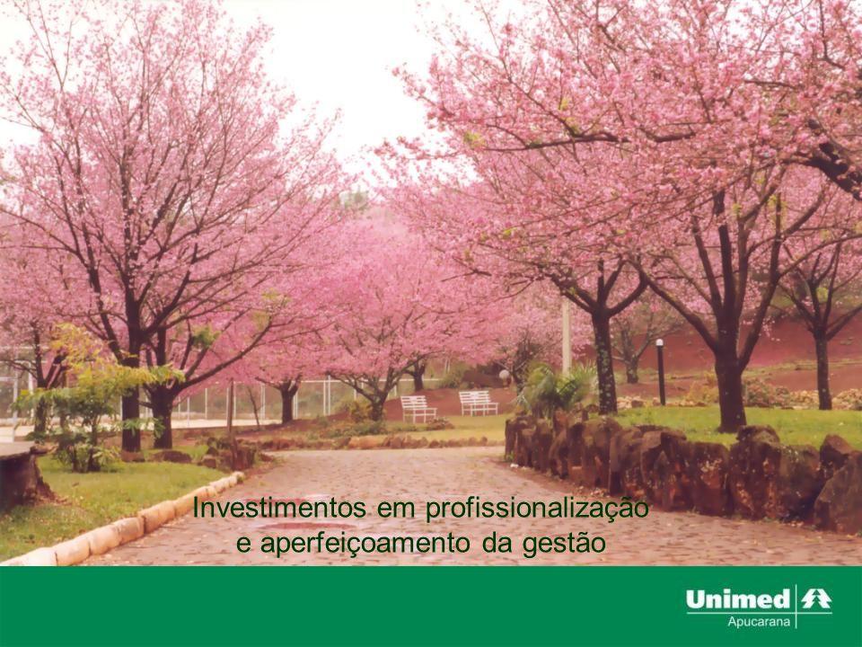 Investimentos em profissionalização e aperfeiçoamento da gestão