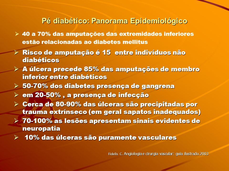 Pé diabético: Panorama Epidemiológico Problema de Saúde Pública 1996 – Prevalência global do diabetes é de 120 milhões de pessoas 1996 – Prevalência g