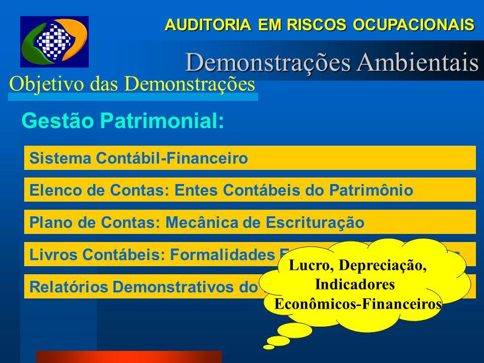 AUDITORIA EM RISCOS OCUPACIONAIS Demonstrações Ambientais Objetivo das Demonstrações INSS atua... Cobrança de Contribuição – Autuação Fiscalização do
