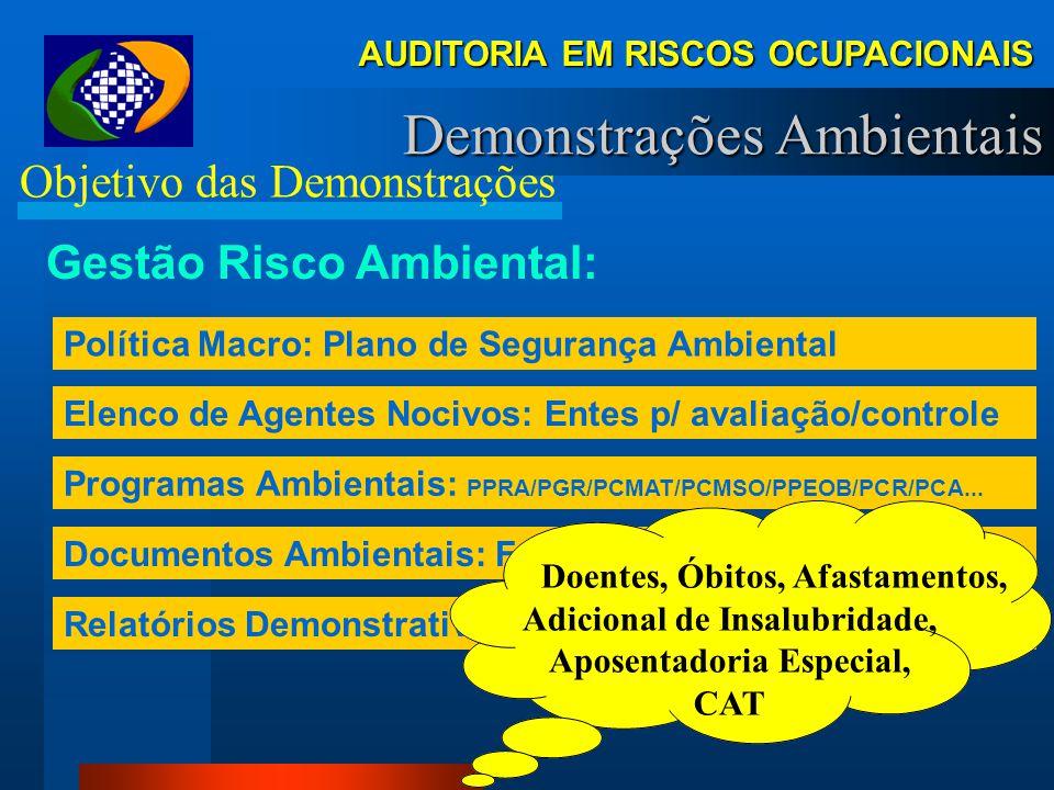 AUDITORIA EM RISCOS OCUPACIONAIS Demonstrações Ambientais Objetivo das Demonstrações Gestão Patrimonial: Sistema Contábil-Financeiro Elenco de Contas: