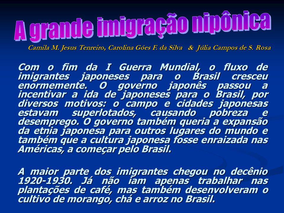 Com o fim da I Guerra Mundial, o fluxo de imigrantes japoneses para o Brasil cresceu enormemente. O governo japonês passou a incentivar a ida de japon