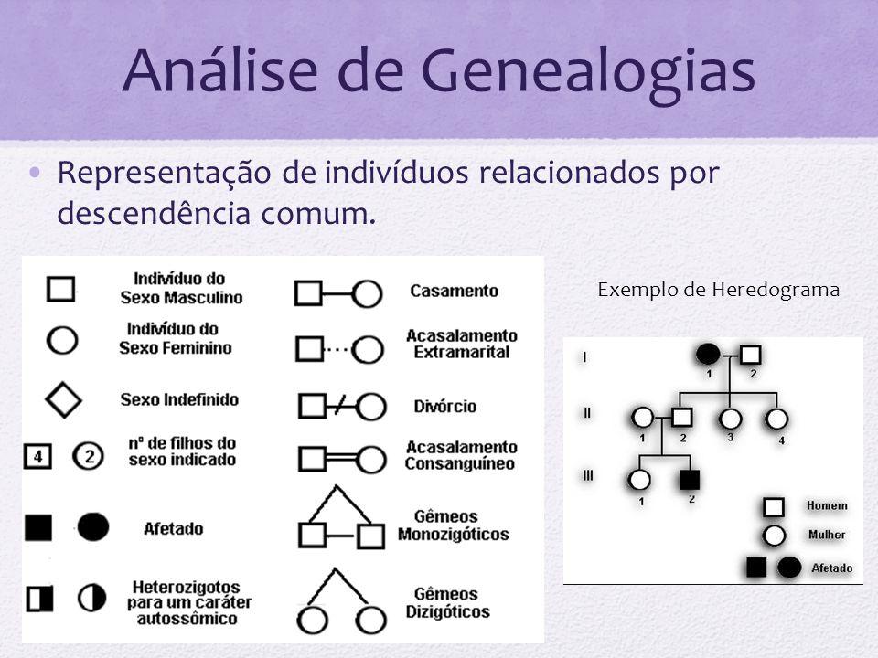 Análise de Genealogias Representação de indivíduos relacionados por descendência comum. Exemplo de Heredograma