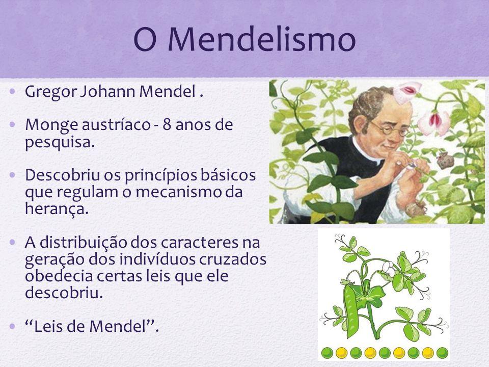 O Mendelismo Gregor Johann Mendel. Monge austríaco - 8 anos de pesquisa. Descobriu os princípios básicos que regulam o mecanismo da herança. A distrib