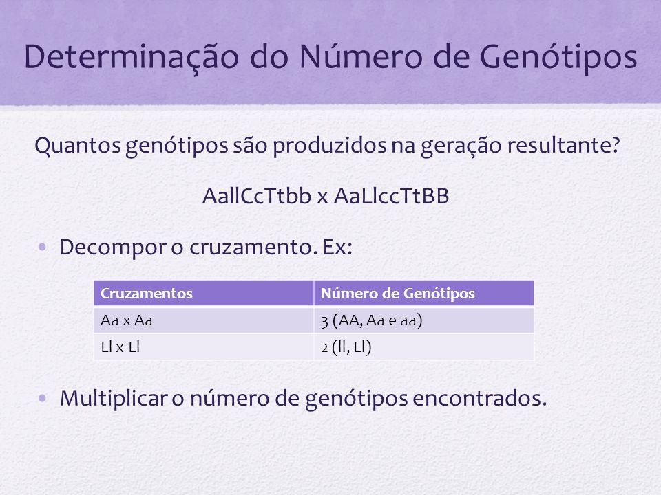 Determinação do Número de Genótipos Quantos genótipos são produzidos na geração resultante? AallCcTtbb x AaLlccTtBB Decompor o cruzamento. Ex: Multipl
