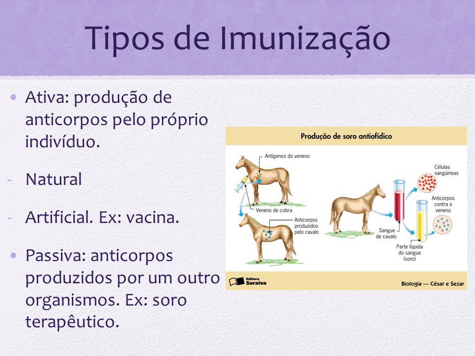 Tipos de Imunização Ativa: produção de anticorpos pelo próprio indivíduo. -Natural -Artificial. Ex: vacina. Passiva: anticorpos produzidos por um outr