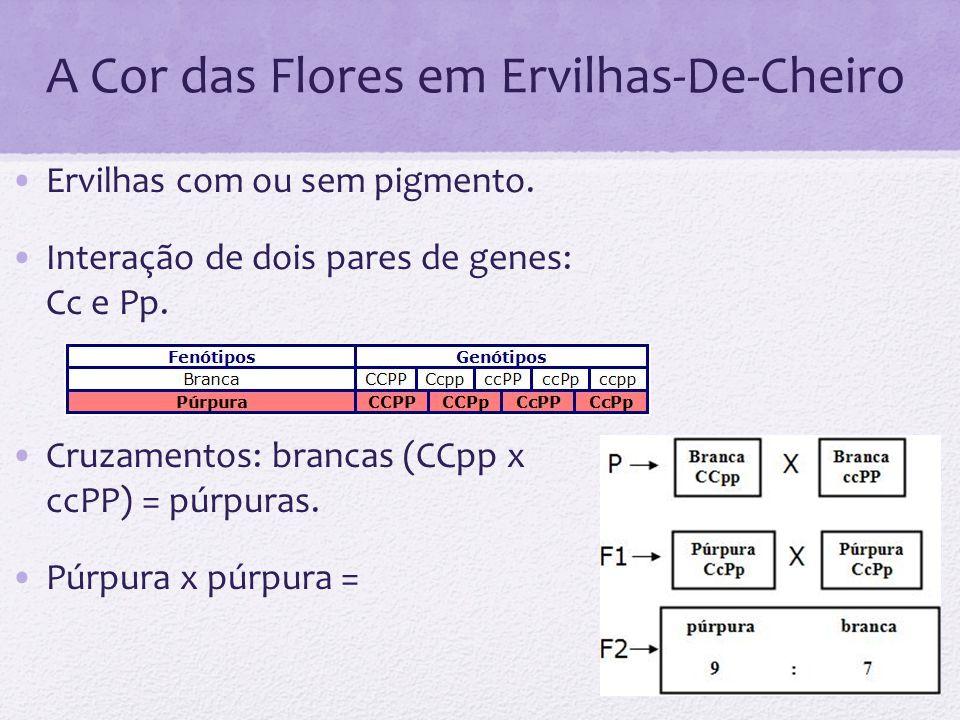 A Cor das Flores em Ervilhas-De-Cheiro Ervilhas com ou sem pigmento. Interação de dois pares de genes: Cc e Pp. Cruzamentos: brancas (CCpp x ccPP) = p