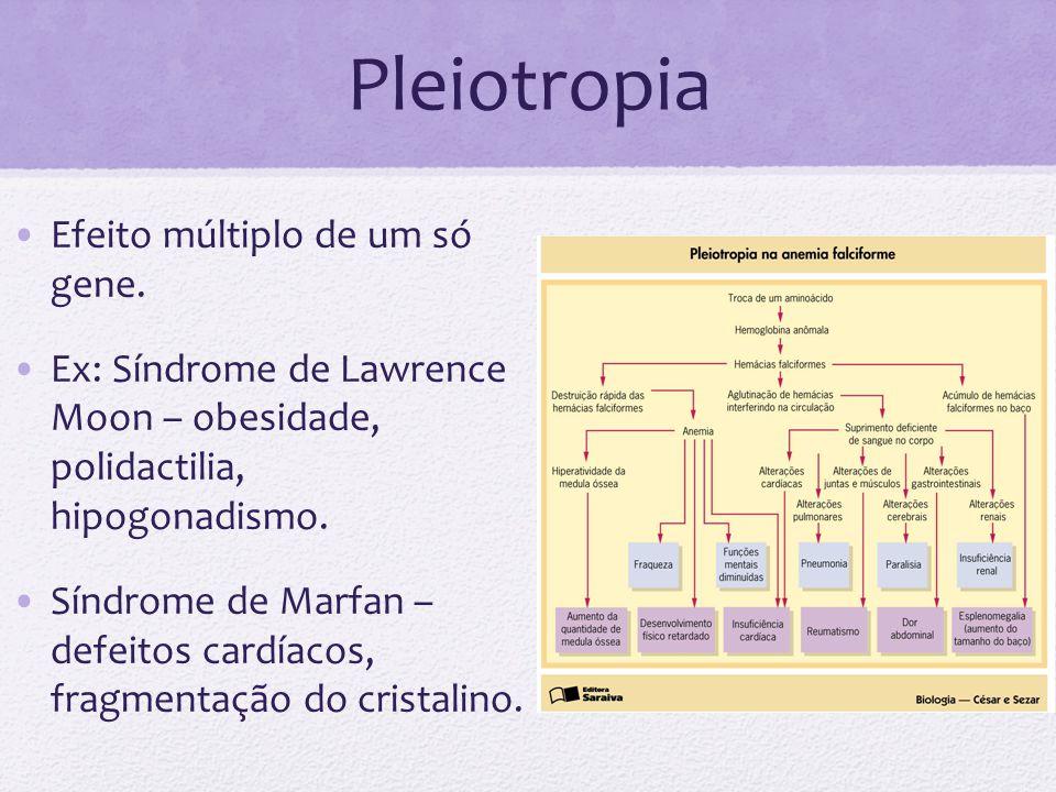 Pleiotropia Efeito múltiplo de um só gene. Ex: Síndrome de Lawrence Moon – obesidade, polidactilia, hipogonadismo. Síndrome de Marfan – defeitos cardí