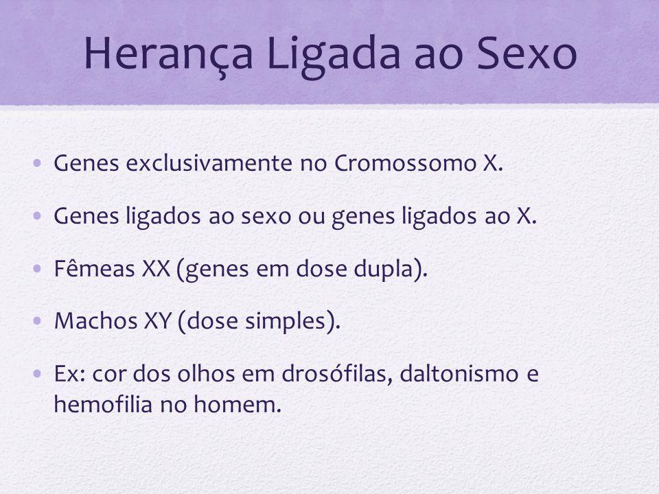 Herança Ligada ao Sexo Genes exclusivamente no Cromossomo X. Genes ligados ao sexo ou genes ligados ao X. Fêmeas XX (genes em dose dupla). Machos XY (