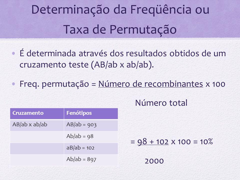 Determinação da Freqüência ou Taxa de Permutação É determinada através dos resultados obtidos de um cruzamento teste (AB/ab x ab/ab). Freq. permutação
