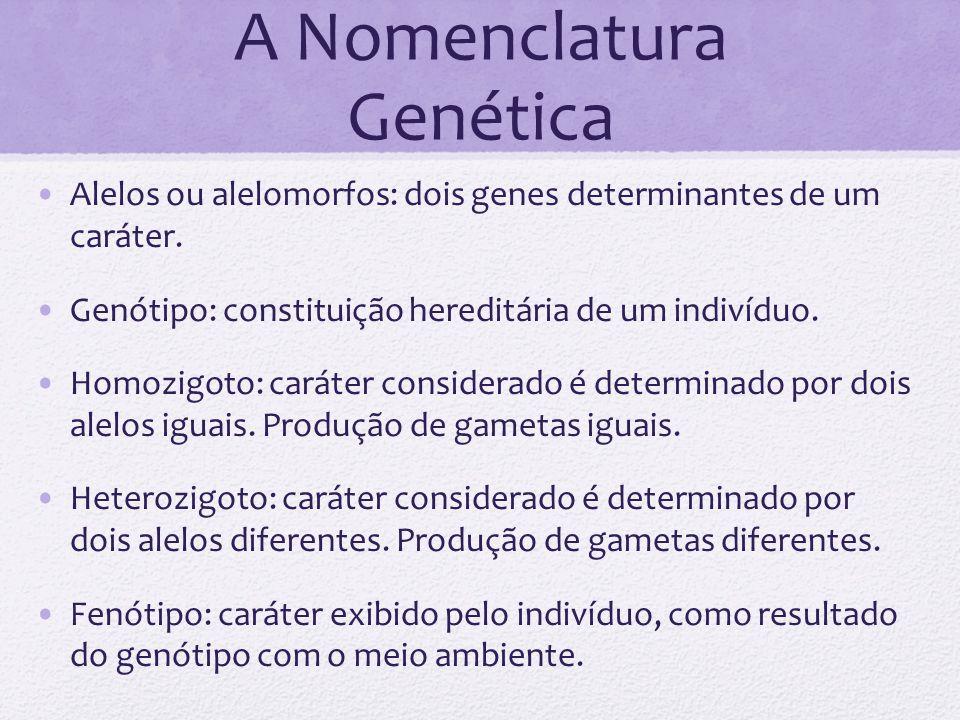 A Nomenclatura Genética Alelos ou alelomorfos: dois genes determinantes de um caráter. Genótipo: constituição hereditária de um indivíduo. Homozigoto: