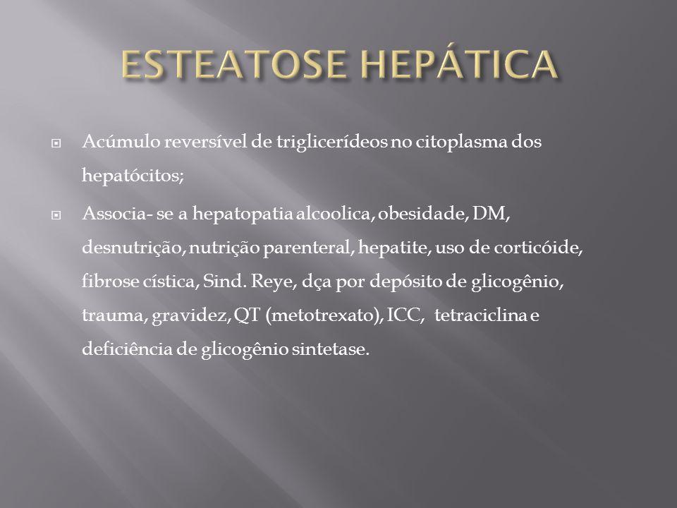 Acúmulo reversível de triglicerídeos no citoplasma dos hepatócitos; Associa- se a hepatopatia alcoolica, obesidade, DM, desnutrição, nutrição parenter