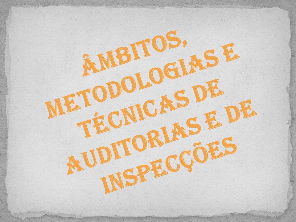Âmbitos, metodologias e técnicas de auditorias e de inspecções