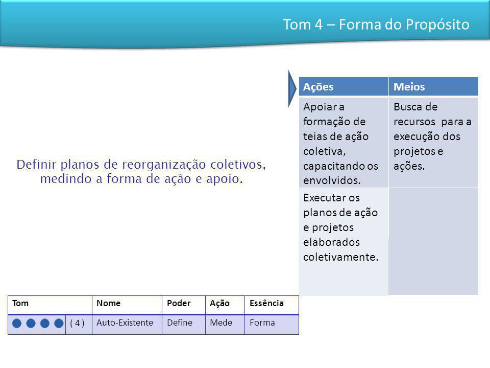 Tom 4 – Forma do Propósito Definir planos de reorganização coletivos, medindo a forma de ação e apoio. AçõesMeios Apoiar a formação de teias de ação c