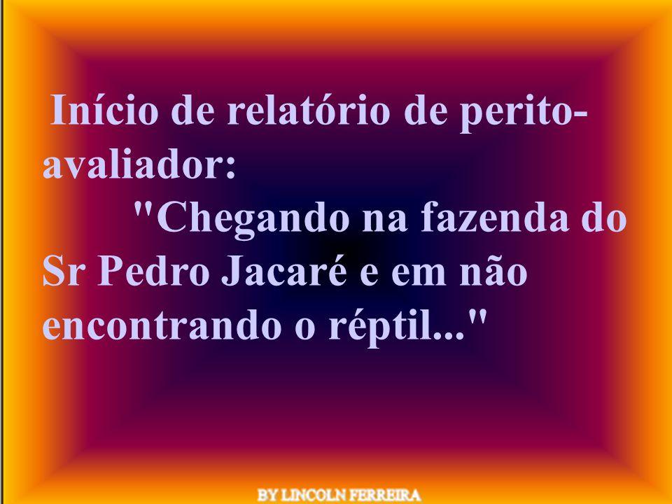 Informação de oficial de Justiça, não tendo encontrado o réu: O mutuário foi para São Paulo melhorar de vida.