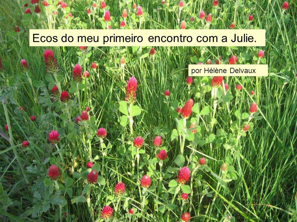 Ecos do meu primeiro encontro com a Julie. por Hélène Delvaux