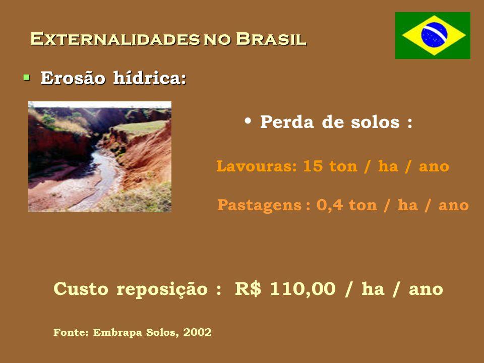 Externalidades no Brasil Erosão hídrica: Erosão hídrica: Perda de solos : Lavouras: 15 ton / ha / ano Fonte: Embrapa Solos, 2002 Pastagens : 0,4 ton / ha / ano Custo reposição : R$ 110,00 / ha / ano