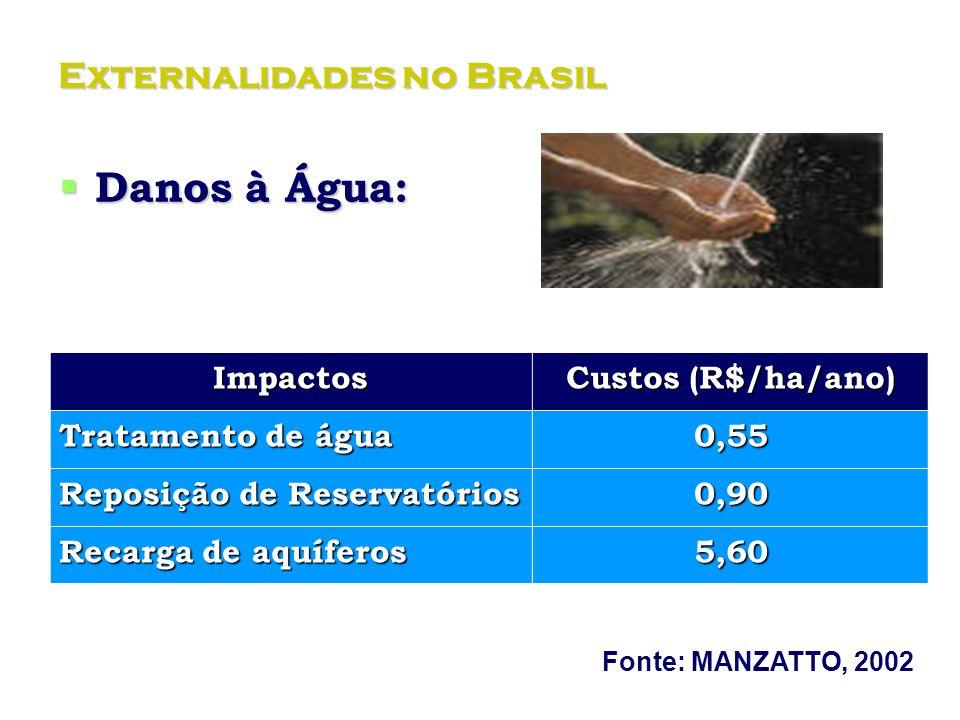 Externalidades no Brasil Danos à Água: Danos à Água:Impactos Custos (R$/ha/ano) Tratamento de água 0,55 Reposição de Reservatórios 0,90 Recarga de aquíferos 5,60 Fonte: MANZATTO, 2002.