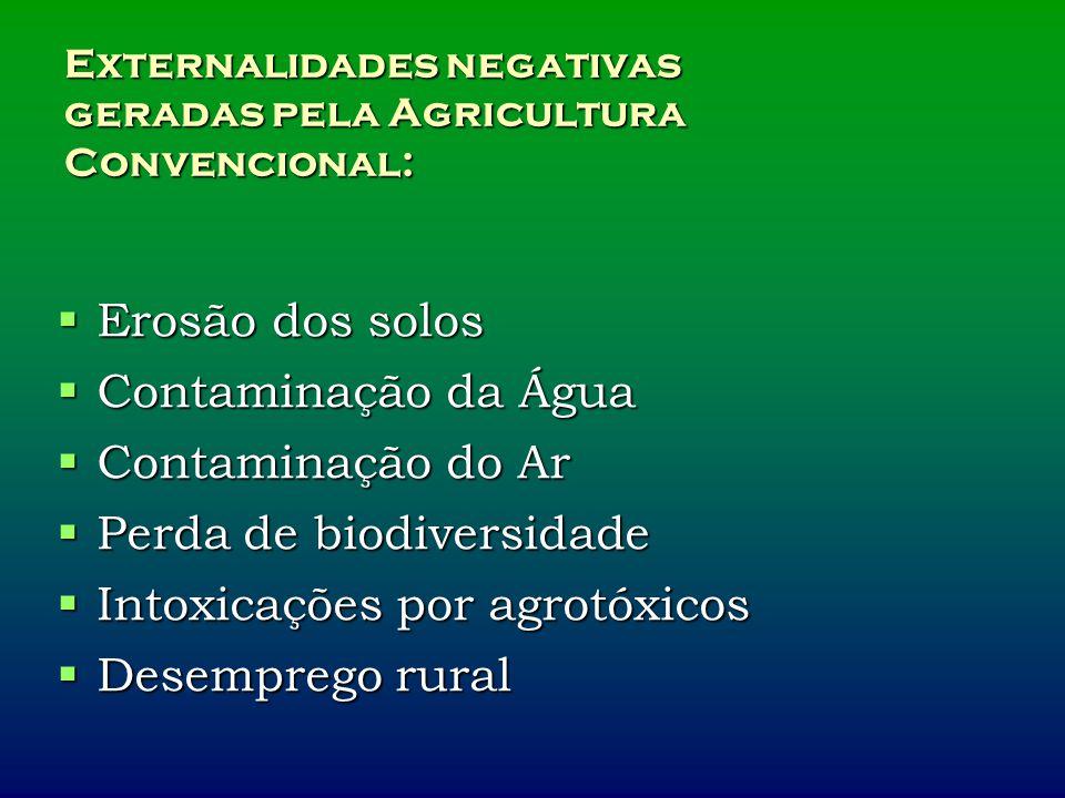 Externalidades negativas geradas pela Agricultura Convencional: Erosão dos solos Erosão dos solos Contaminação da Água Contaminação da Água Contaminação do Ar Contaminação do Ar Perda de biodiversidade Perda de biodiversidade Intoxicações por agrotóxicos Intoxicações por agrotóxicos Desemprego rural Desemprego rural