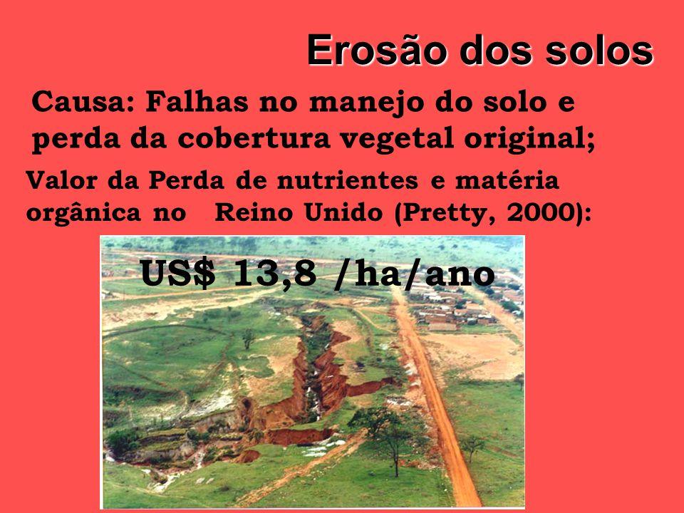 Externalidades no Brasil Danos ao Ar: Danos ao Ar: Desperdício de combustíveis: 31 L / ha / ano Efeito estufa : Emissão de 160.000 tC Fonte: LANDERS (2001) Custo parcial : R$ 0,01/ha/ano Custo : R$ 49,60 / ha / ano