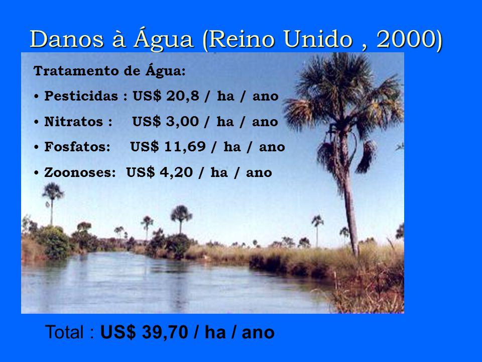 Danos à Água (Reino Unido, 2000) Tratamento de Água: Pesticidas : US$ 20,8 / ha / ano Nitratos : US$ 3,00 / ha / ano Fosfatos: US$ 11,69 / ha / ano Zoonoses: US$ 4,20 / ha / ano Total : US$ 39,70 / ha / ano