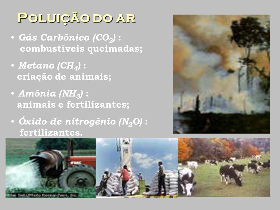 Poluição do ar Gás Carbônico (CO 2 ) : combustíveis queimadas; Metano (CH 4 ) : criação de animais; Amônia (NH 3 ) : animais e fertilizantes; Óxido de nitrogênio (N 2 O) : fertilizantes.