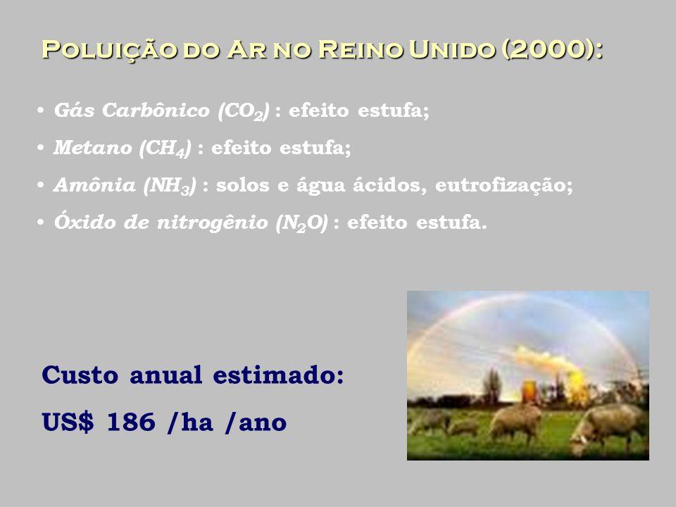 Externalidades no Brasil Desemprego rural : Desemprego rural : Sistema de produção Empregos em 1000 ha Ecológico50,3 Químico35,3 Orgânico25,7 Herbicidas13,9 FONTE : ORTEGA (2002)