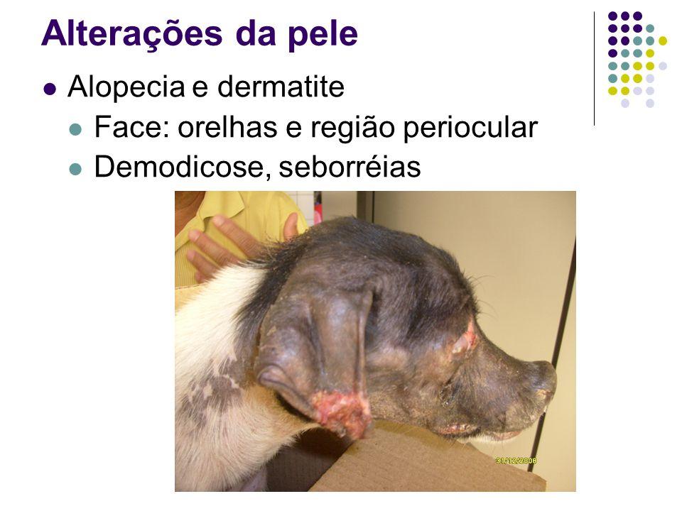 Alterações da pele Alopecia e dermatite Face: orelhas e região periocular Demodicose, seborréias