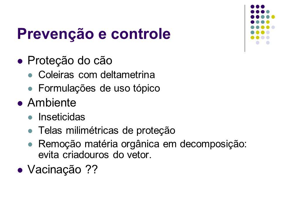 Prevenção e controle Proteção do cão Coleiras com deltametrina Formulações de uso tópico Ambiente Inseticidas Telas milimétricas de proteção Remoção m