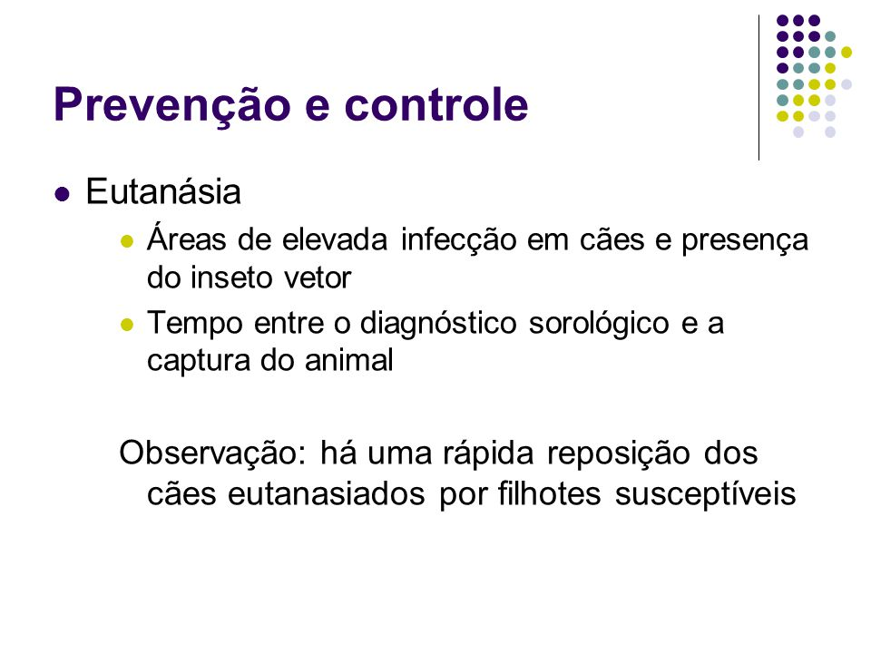 Prevenção e controle Eutanásia Áreas de elevada infecção em cães e presença do inseto vetor Tempo entre o diagnóstico sorológico e a captura do animal