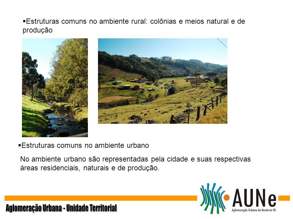 Estruturas comuns no ambiente rural: colônias e meios natural e de produção Estruturas comuns no ambiente urbano No ambiente urbano são representadas